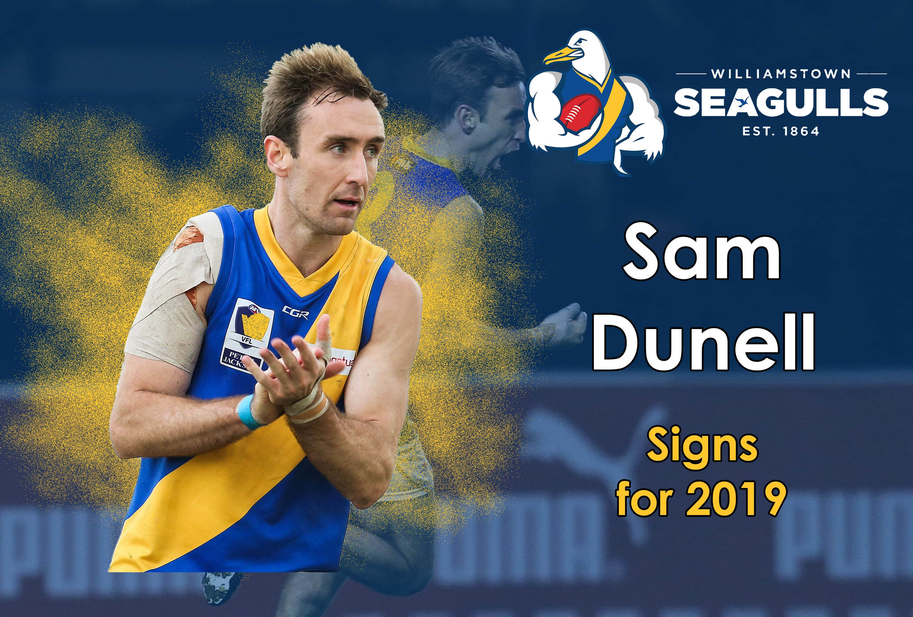 VFL stars re-sign for 2019 - Williamstown Football Club