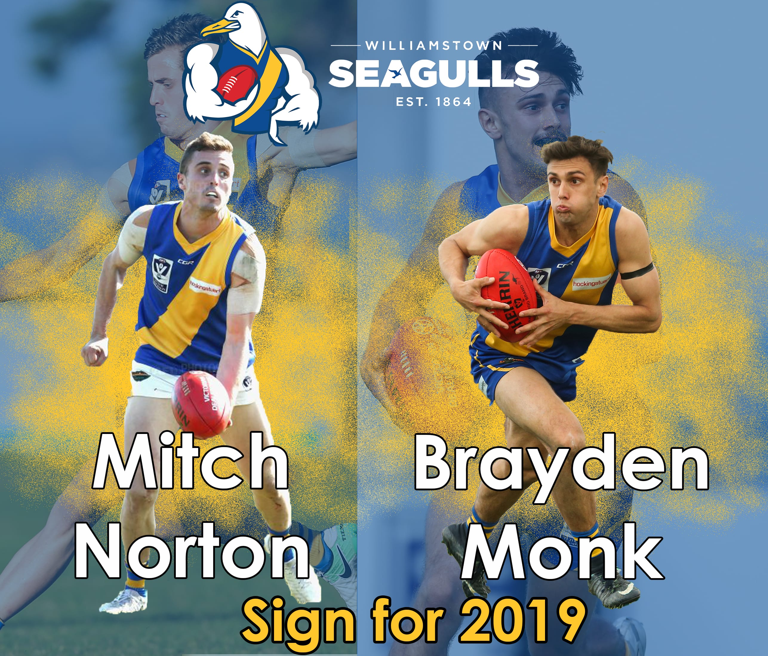 Young guns re-sign for 2019 - Williamstown Football Club